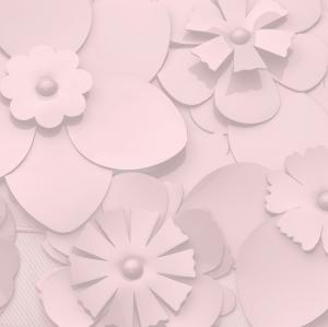 AUTOSEGGIOLINO CLOUD Z I-SIZE - SIMPLY FLOWERS - PALE BLUSH - 21CYAUCLZ521001281 - Img 5
